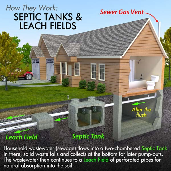 septic tanks work